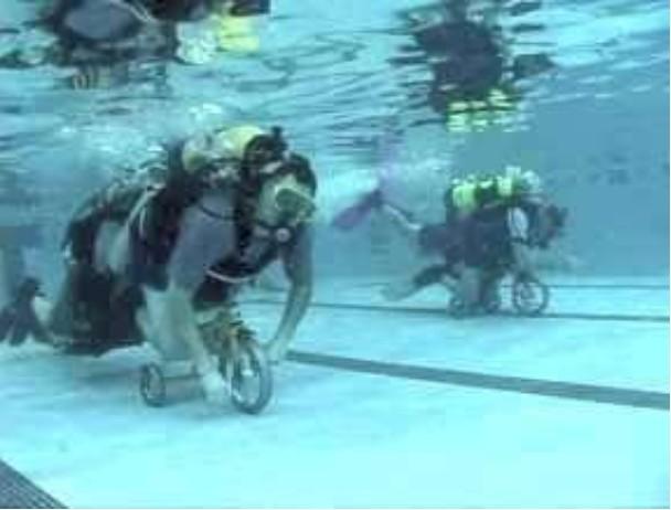 Underwater Bike Race photo